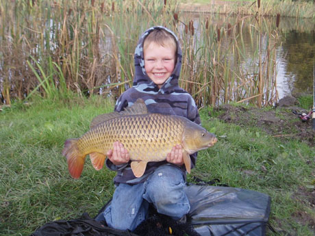 common carp pictures. common carp. Gallery; Gallery